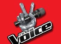 The Voice : Lilian sacré vainqueur de la saison 4