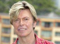 """David Bowie composera la comédie musicale """"Bob L'Eponge"""""""